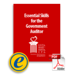 Essential Skills for the Government Auditor